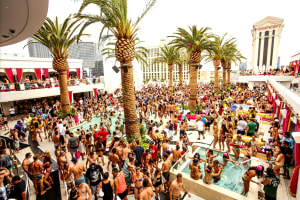 VIP Pool Party Drinks & Bed