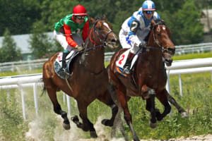 Horse Racing Tickets at Aintree Racecourse