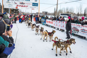 Iditarod: The Last Great Race