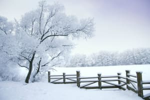 10 Stunning Winter Wonderlands