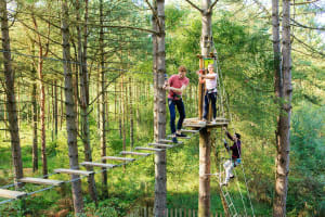 Margam country park - High rope course