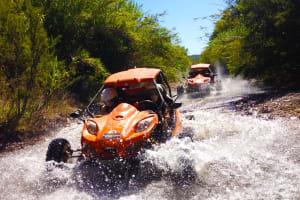 Jeep Safari - Half Day