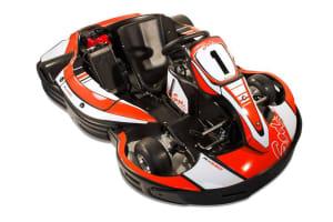 Sodi RX250 Go Kart cut out