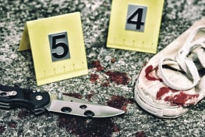 Zone 1 - Blood Spatter Analysis