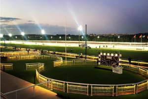 Hipodromo De La Zarzuela - Race course