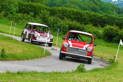 two stag racing mini's
