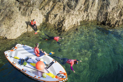 people doing snorkeling