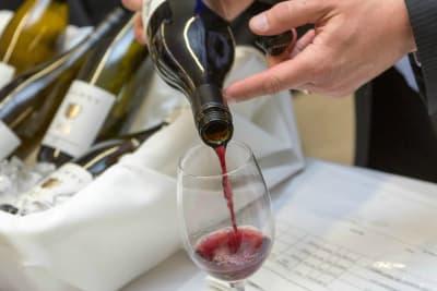 Group enjoying wine tasting class
