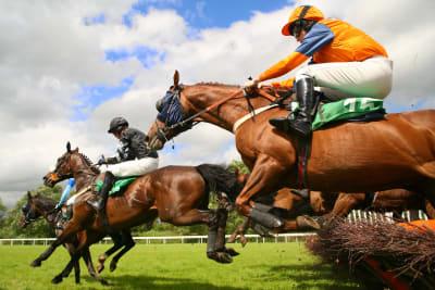horse jump over a jump at a racecourse