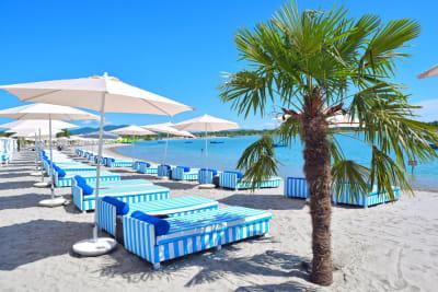 Lake Lupa Premium Beach sunbeds and palm tree