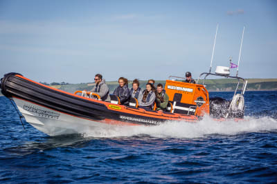 Powerboat - Newquay