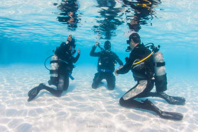Discover Scuba Diving Pool