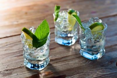 vodka tasting event