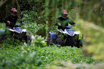 a group driving quad bikes through the woods