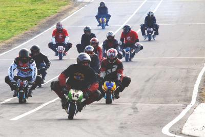 A stag group riding mini motos