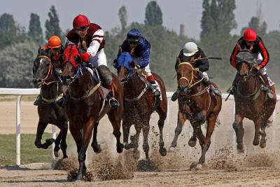 Horse racing at Kincsem Park. Budapest