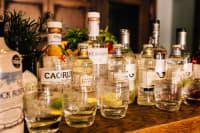 Gin Tasting - Edinburgh