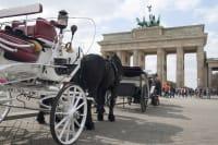 Horse & Carriage City Tour berlin