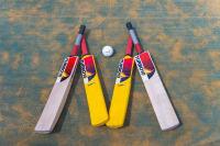 Investigate Turbo Cricket Game