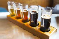 Beer tasting ale tasting brewery
