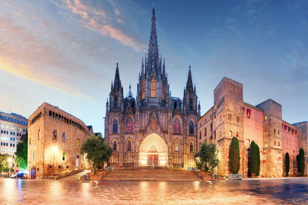 Gothic Barcelona Cathedral at night, Spain