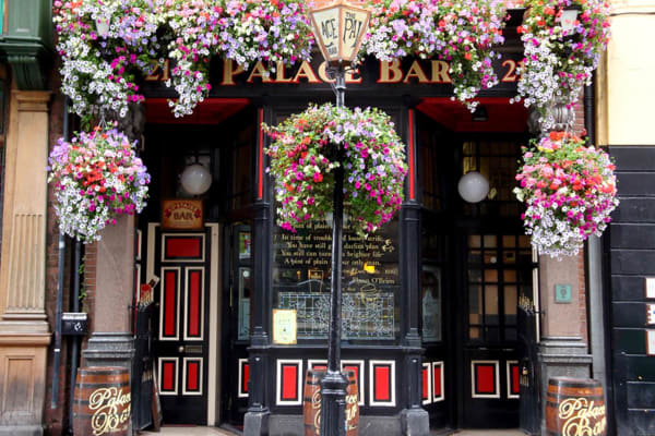 Palace Bar - Best pub crawl in Dublin